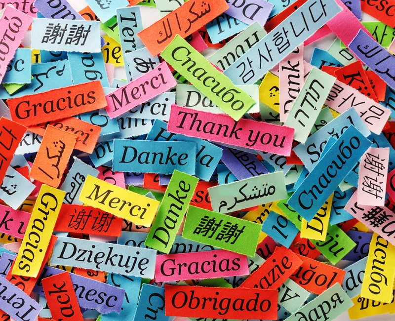 Các ngôn ngữ trên thế giới