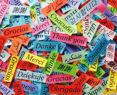 TOP 10 Những Ngôn Ngữ Nên Học | Ngôn Ngữ Dễ Học Nhất Với Người Việt 2021